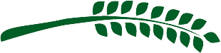 Branch from the Helpmate logo